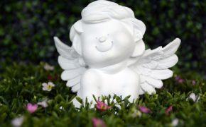 angel-guardian-angel-wing-satisfied-160782 (1)